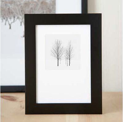 6 trees framed
